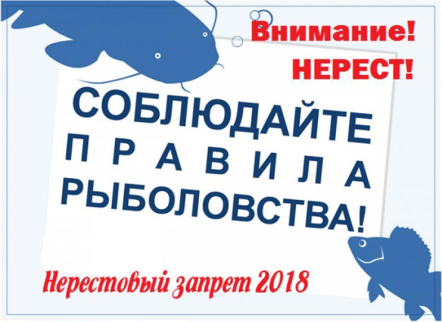 Закон о рыбалке и новое в Правилах рыболовства 2018