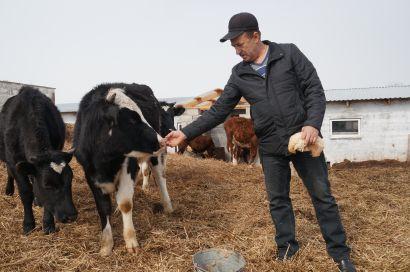 Объявлен конкурс для лучших аграриев региона